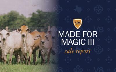 Made for Magic III Generates Tremendous Interest