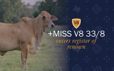 +Miss V8 33/8 Enters Register of Renown